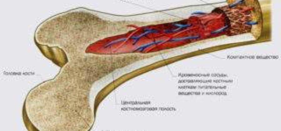 Что значит отек костного мозга в крестцово подвздошном сочленении?