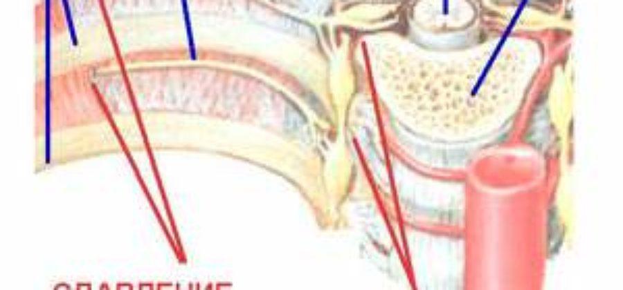 Боль в левом боку под ребрами после ушиба